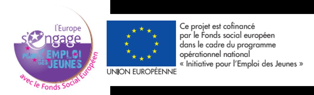 Fond Social Européen - IEJ