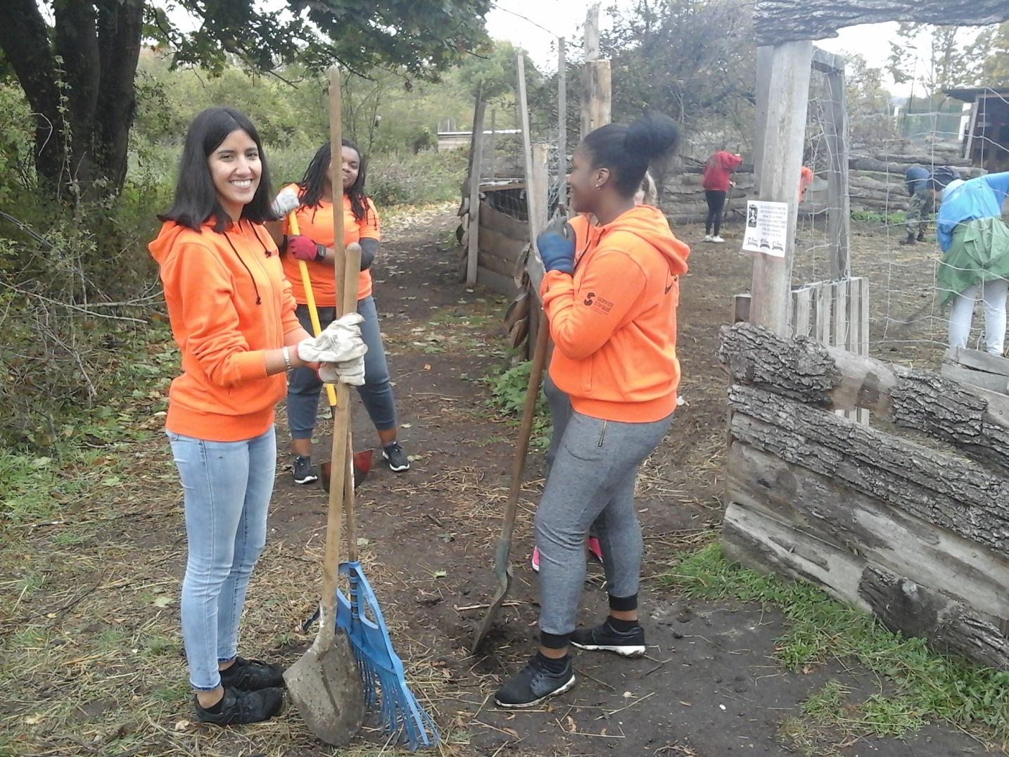 Unis-Cité 93 recrute des jeunes pour une mission « Environnement et Développement durable »