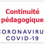 Participer à la continuité pédagogique: témoignages de volontaires toulonnais mobilisés